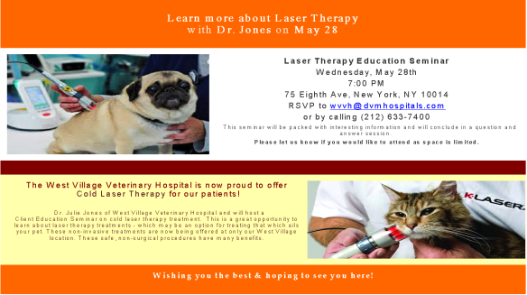 LaserTherapySeminar