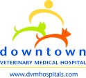 DVM_Downtown_Logo_NoBackground_Website_PMS