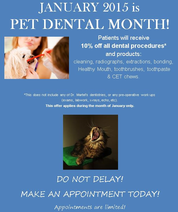 JANUARY 2015 is  PET DENTAL MONTH! Patients will receive  10% off all dental procedures*  and products: cleaning, radiographs, extractions, bonding,   Healthy Mouth, toothbrushes, toothpaste  & CET chews.