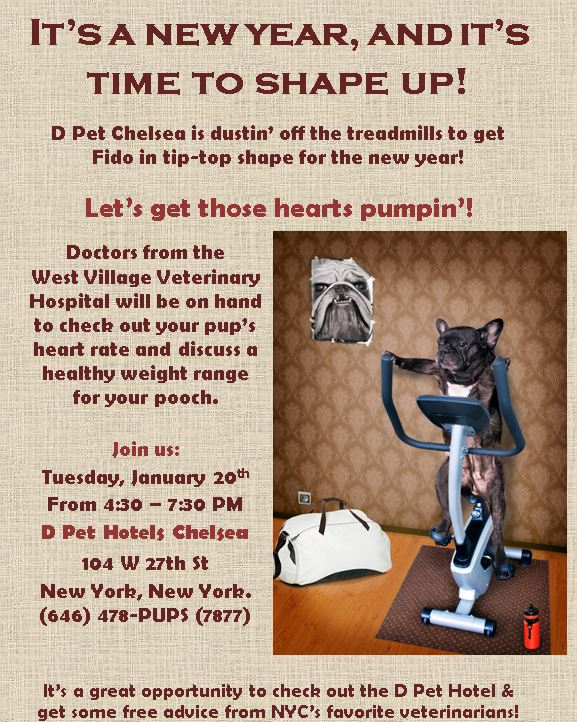Check us out: Tuesday, January 20th From 4:30 – 7:30 PM D Pet Hotels Chelsea Encourage your pets to stay on track in the new year and keep those new year's resolutions of health and fitness!